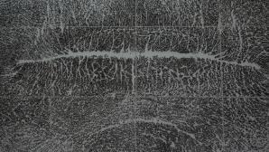 Giuseppe Penone - Spine d'acacia