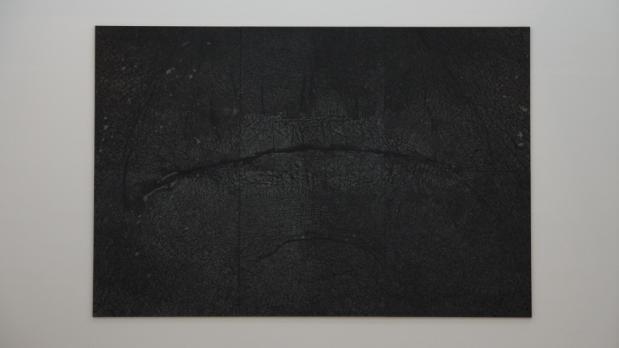 Giuseppe Penone - Pelle di grafite riflesso di ambra