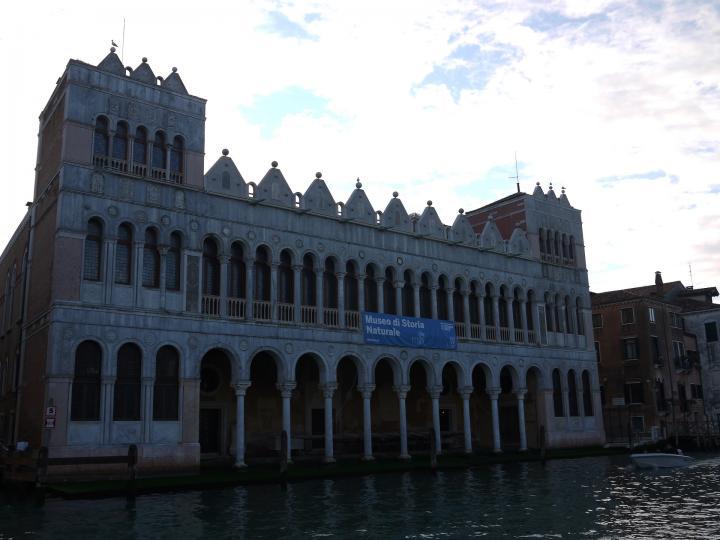 Venise - Museo di storia naturale