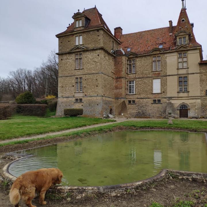 Chateau de Bresson