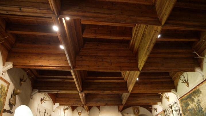 Chateau de Montrottier - Plafond à caissons de la salle des chevaliers