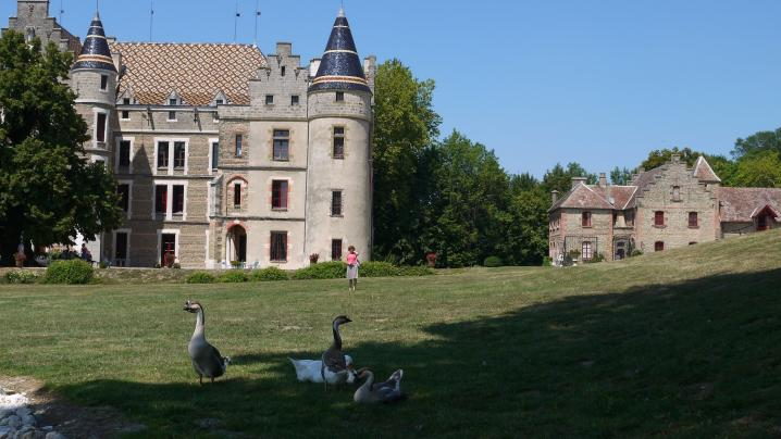 Chateau de Pupetieres - Château, communs et les petits canards