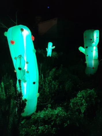 Lyon - Fête des Lumières 2018 - Cactus