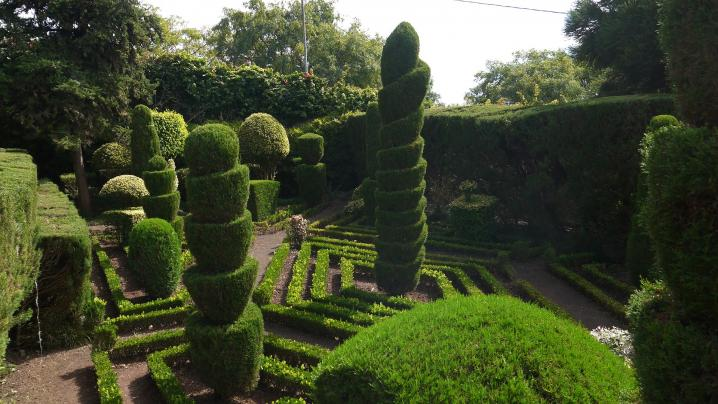 Madere - Jardin botanique - L'art topiaire