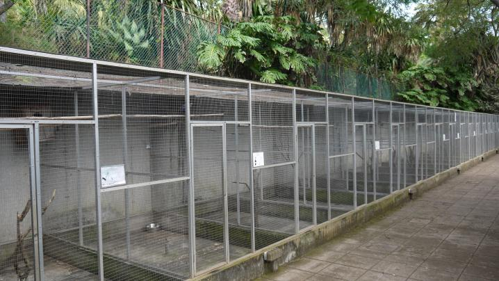 Madere - Jardin botanique - Les cages vides de végétation
