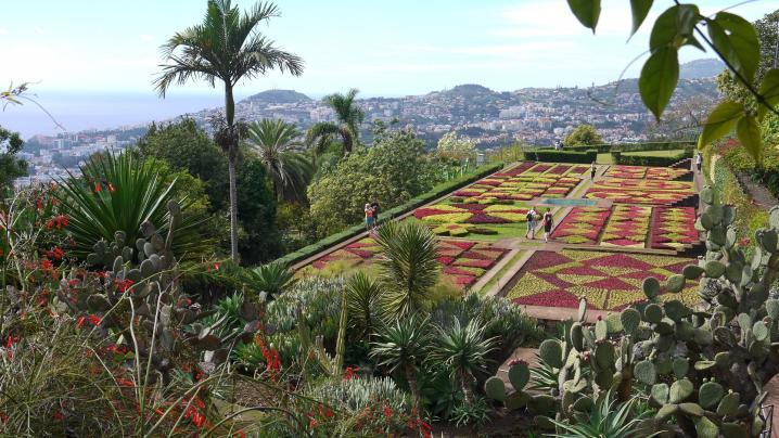 Madere - Jardin botanique - Terrasse