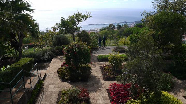 Madere - Jardin botanique un peu partout vue sur la baie de Funchal
