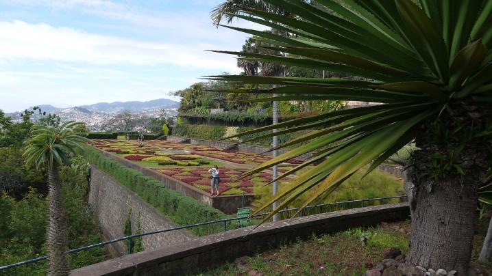 Madere - Jardin botanique - Vue sur la terrasse colorée