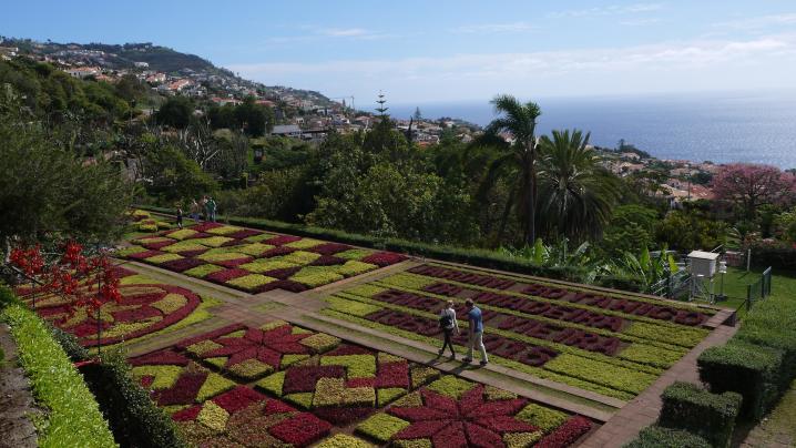 Madère - Terrasses du jardin botanique