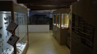 Musee archéologique du lac de Paladru - Exposition permanente