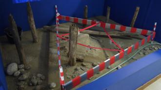 Musée archéologique du lac de Paladru - Triangle de fouille
