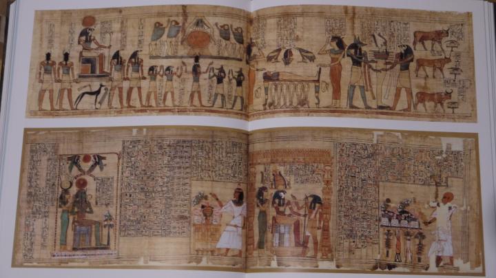 Servir les dieux d'Egypte - Photos très détaillées de papyrus