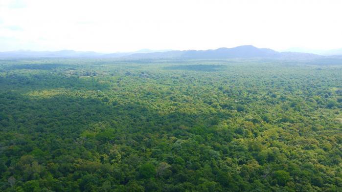 Sri Lanka - Sigiriya - Panorama ouest escalier 3 sur 3