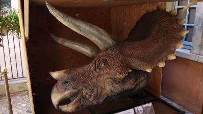 Tete du triceratops de Jurassic Park