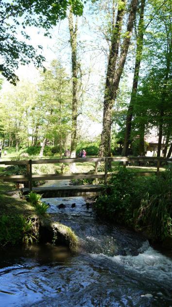 Saint Jean de Chépy - De l'eau et de la verdure partout
