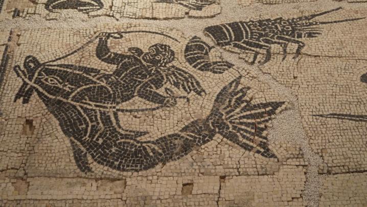 Vienne - Mosaïque du Dieu Ocean - Détail angle bas gauche