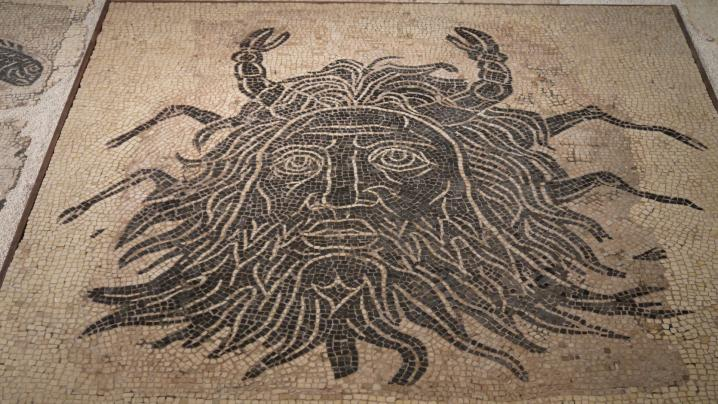 Vienne - Mosaïque du dieu Océan - Détail visage