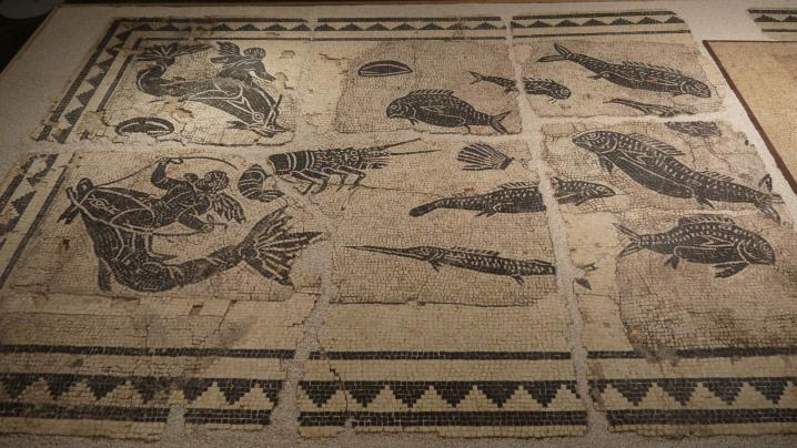 Vienne - Mosaïque du Dieu Océan (partie gauche)